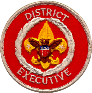 boy scout district executive resume thornton resume security